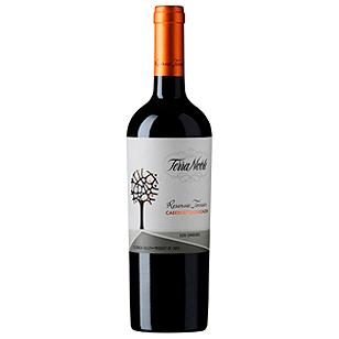 Vinedos-Terranoble-Cabernet-Sauvignon-Reserva-Terroir