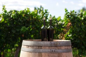 Wines from Italy are among the best in the world. Our wine guide walks through the Italian wine regions you need to explore.