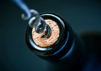 wine cork in bottle and corkscrew