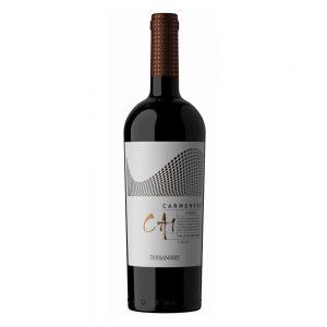 Vinedos-Terranoble-CA1-Carmenere